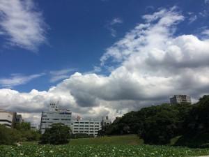 east summer sky